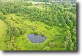 New York Hunting Land 12 Acres 12 ac with Pond Wayland NY 2448 Co Rd 50