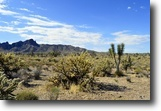1.07-acre Lot For Sale In Dolan Spring