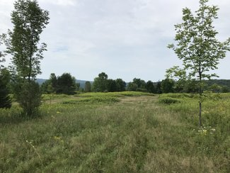 103 acres Hunting Plymouth NY Clymer Court