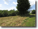Tennessee Farm Land 4 Acres 3.54 ac with Dale Hollow Lake View