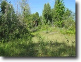80 +/- Wooded Recreational Acres 1129402