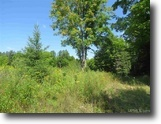 160 +/- Wooded Recreational Acres 1129403