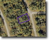 Wooded Lot For Sale In North Port!