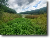 New York Hunting Land 8 Acres 8 ac Waterfront Rexville NY State Rte 248