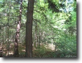 80 +/- Acres Wooded Rec 1129705