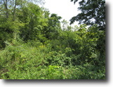 Tennessee Land 2 Acres 1.50 ac w/ utilities installed-no restrict