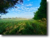 Beautiful 38+/- Acres in 8 Parcels