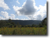 Tennessee Land 253 Acres 253+ ac w/ Ponds, Creeks, Timber, Fields+