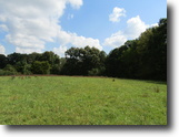 Tennessee Land 3 Acres 3.09 ac Pond/Dock-shares Lovely Build Site