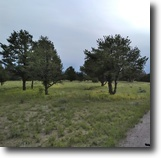 New Mexico Land 39 Acres Beautiful land in New Mexico