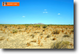 Steal 1.5 Acres In New Mexico From Me!