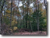 New York Hunting Land 7 Acres Walk to Mad River