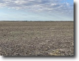 Auction 11/22 10am, 720± Acres in 5 tract