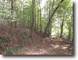 Tennessee Land 10 Acres 10 ac Totally Wooded+Mtn Views, Utilities